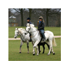 Houghton Hall Charity Horse Ride