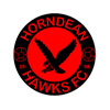 Horndean Football Tournament Photos