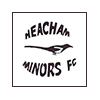 Heacham Minors Football Tournament Photos